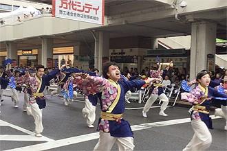 yosakoi05