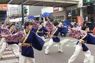 yosakoi08