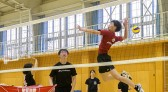 volly01
