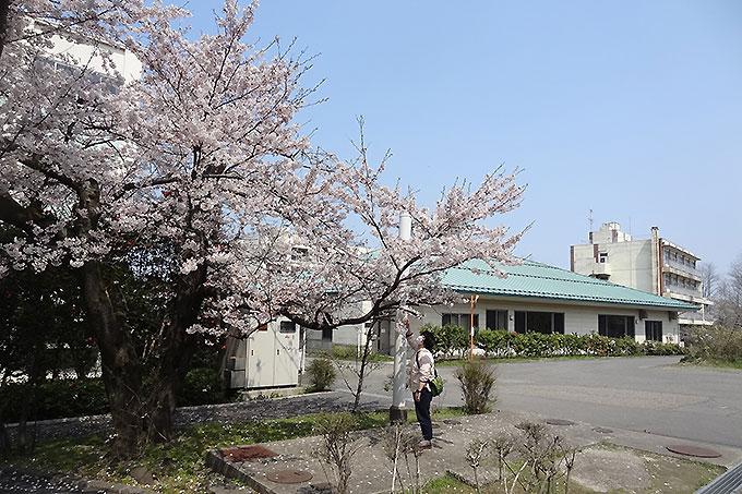 konshu0122_01